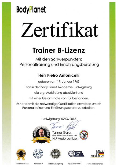 Trainer B-Lizenz